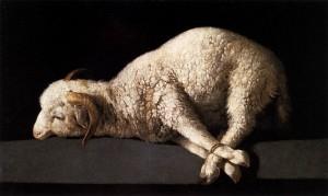 Pastele-Mielul De Jertfa